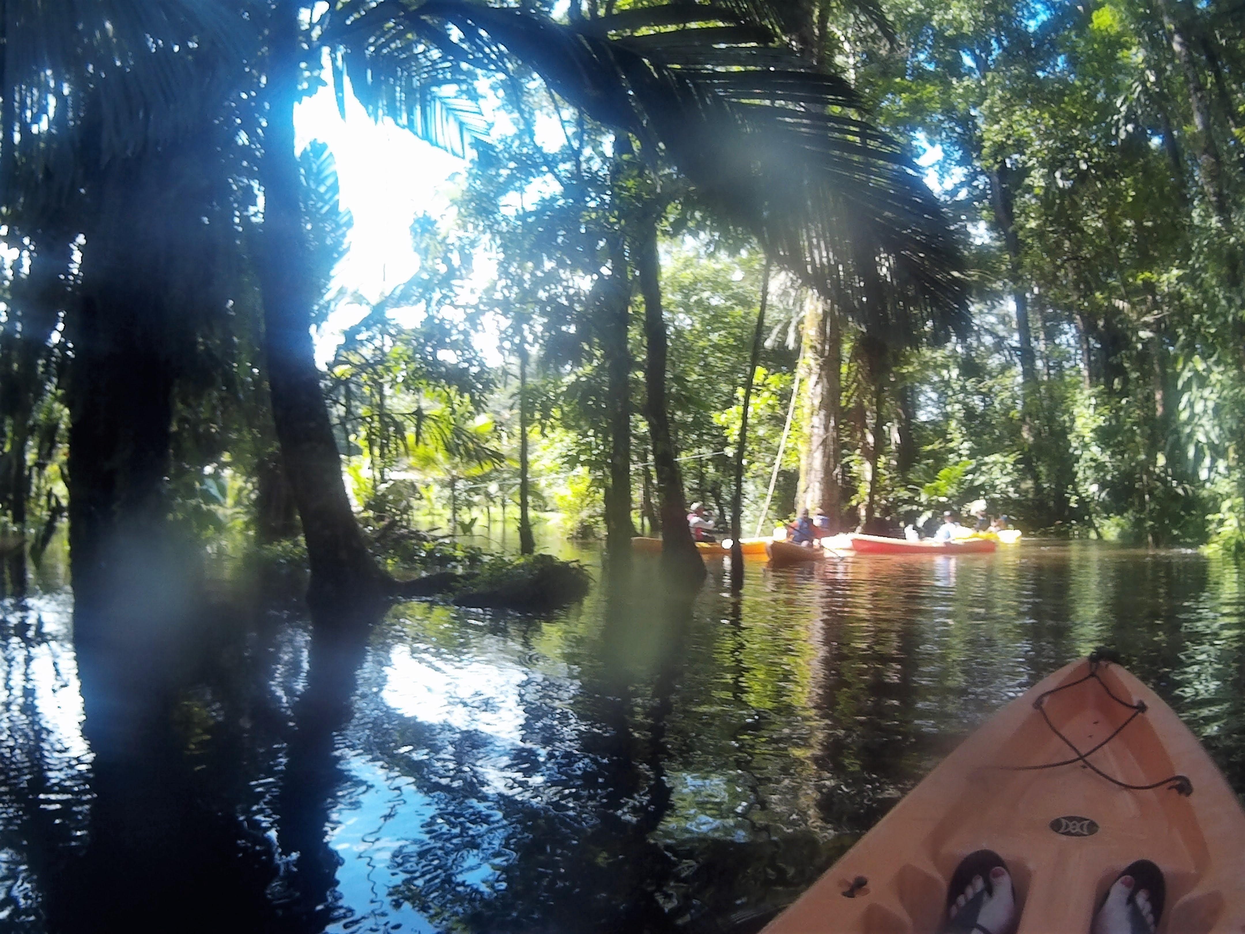 Top adventurous things to do in Costa Rica - kayaking through the jungle with the sun coming through the leaves