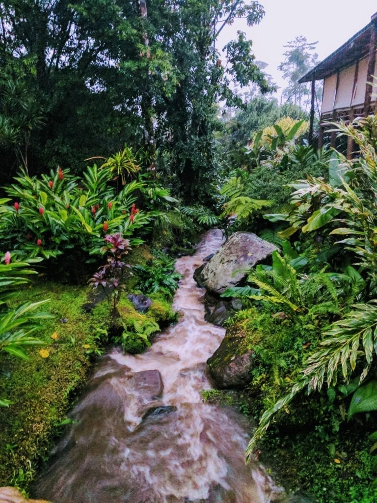 Things to do in Arenal Costa Rica - beautiful garden with a jungle feel at the hot springs