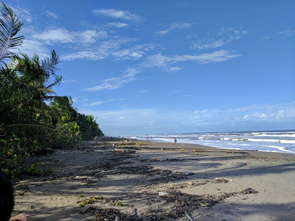 Costa Rica Itinerary - the black sands and big waves of Tortuguero beach