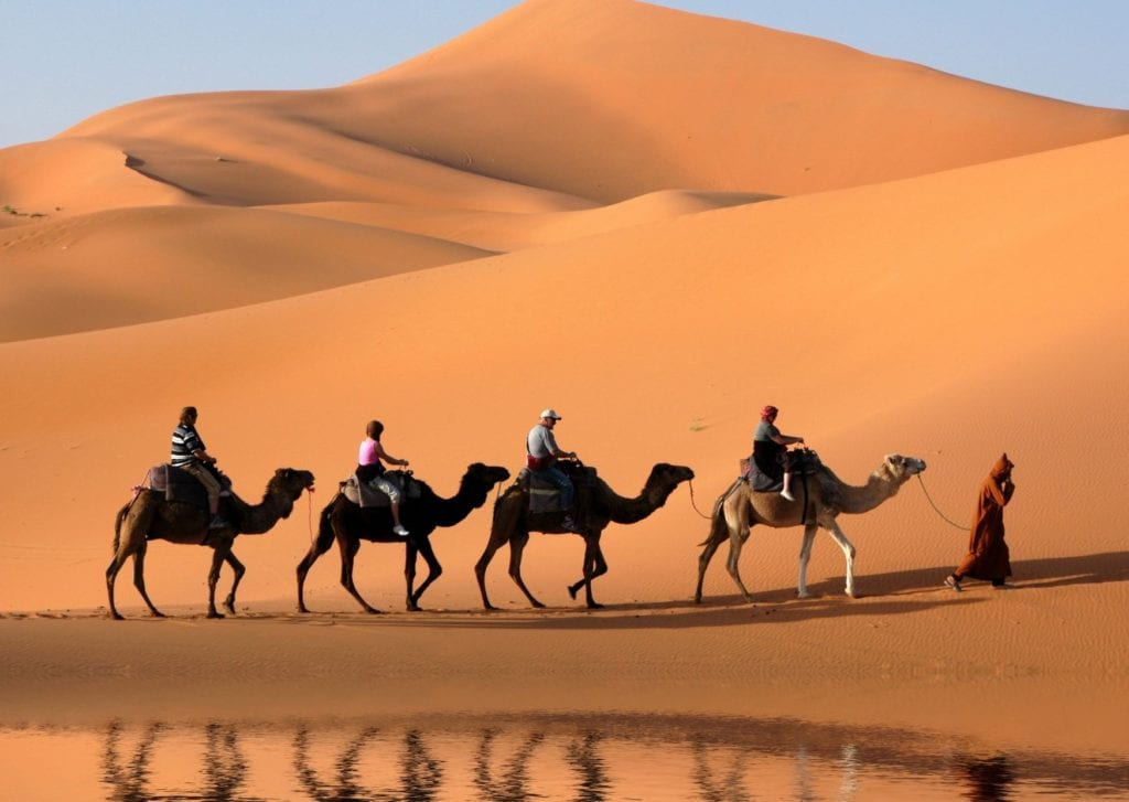 Epic things to do in Marrakech - a trail of people riding camels across the red sands of the Sahara desert